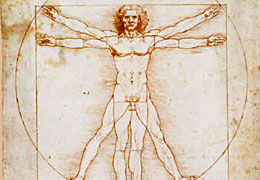 Anatomie und Medizin