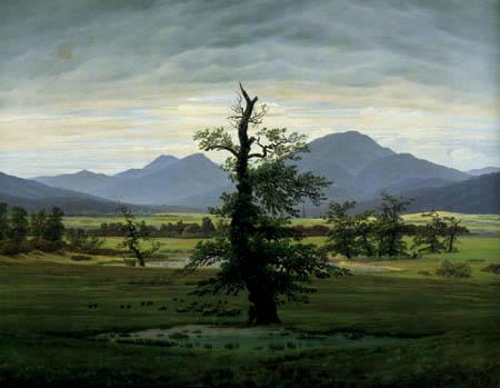 Caspar David Friedrich - Der einsame Baum, outlet RO
