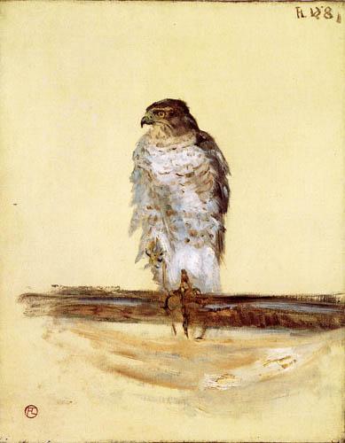 Henri de Toulouse-Lautrec - Peregrine Falcon