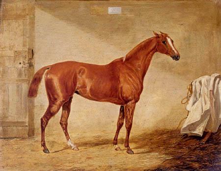 Henry Alken, Snr. - A racehorse in a loose box