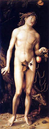Hans Baldung, called Grien - Adam