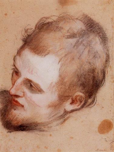 Federigo Barocci - Männlicher Kopf