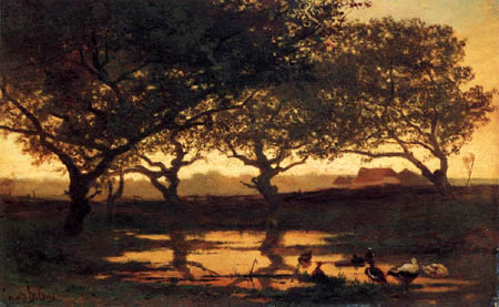 Albert Gerard Bilders - Ducks in the sunset