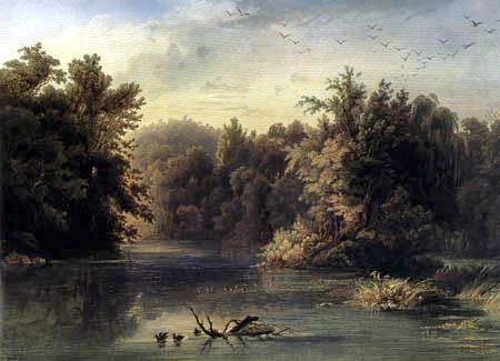 Karl Bodmer - Waldstück im Lehigh County, Pennsylvania
