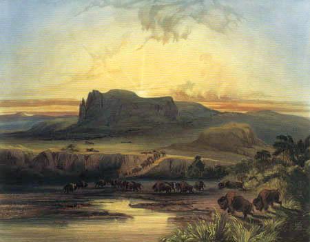 Karl Bodmer - Bisonherde am oberen Missouri