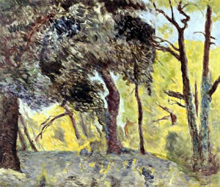 Pierre Bonnard - Sous-bois, Esquisse
