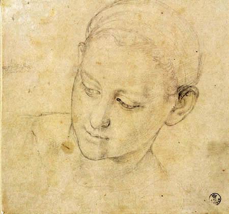 Il (Agnolo) Bronzino - Studie eines Frauenkopfes