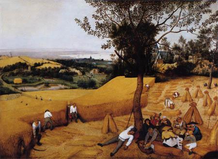 Pieter Brueghel the Elder - Grain harvest