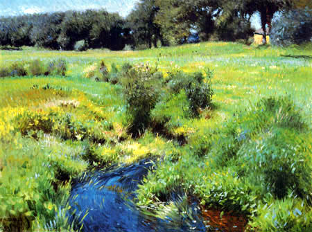 Dennis Miller Bunker - Pond in Medfield