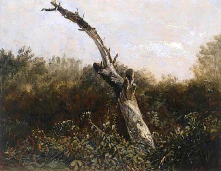 Carl Gustav Carus - A study of trees