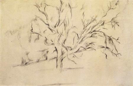 Paul Cézanne (Cezanne) - Baumstudie