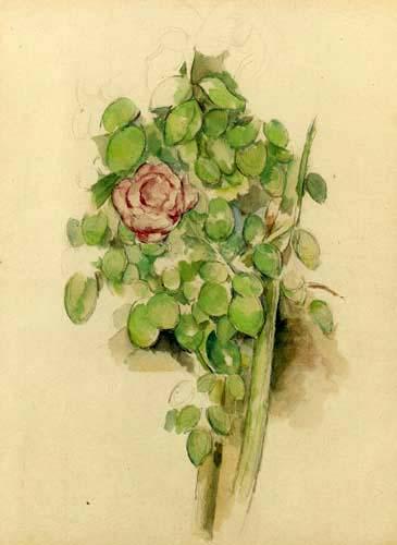 Paul Cézanne (Cezanne) - Rose Tree