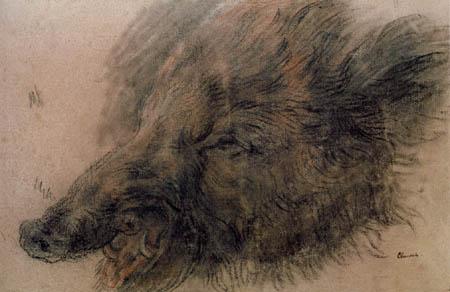 Jean-Baptiste Siméon Chardin - Wild boar head