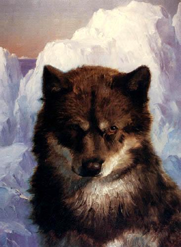 Frederick Edwin Church - Schlittenhund