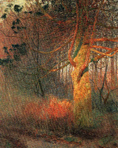 Emile Claus - A tree in the sun