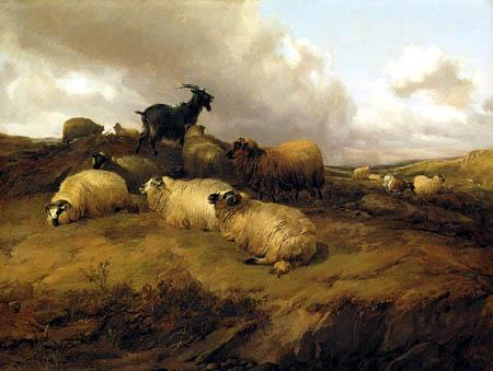 Thomas Sidney Cooper - Paisaje con ovejas y cabras