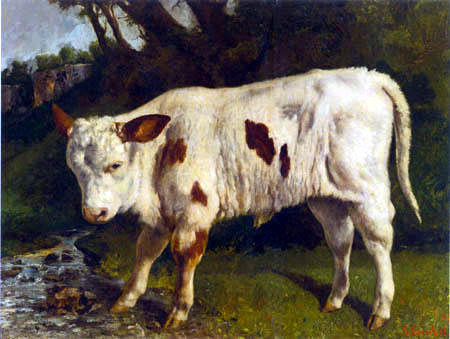 Gustave Courbet - The white calf