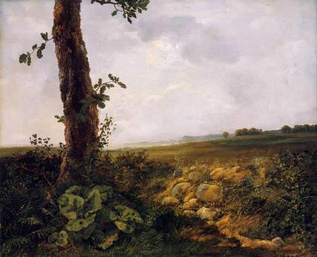 Johan Christian Dahl - Paysage, Praesto