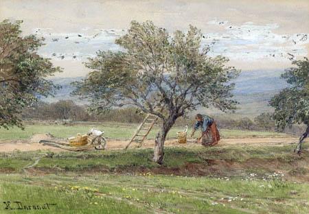 Hugo Darnaut - Bäuerin beim Obstklauben, Zwetschgenernte in Pawlavitz