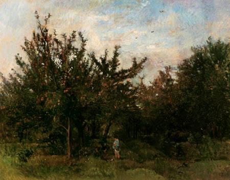 Charles-François Daubigny - Un jardin de pomme