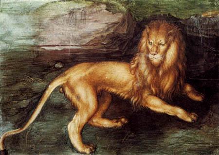 Albrecht Dürer - A lion