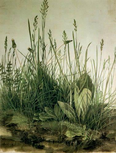Albrecht Dürer - Ein Rasenstück
