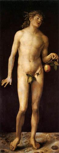 Albrecht Dürer - Adam