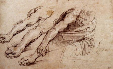 Sir  Anthonis van Dyck - Studie eines Mannes