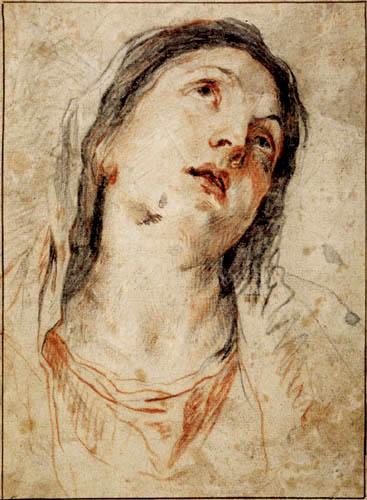 Sir  Anthonis van Dyck - Head of Madonna, study