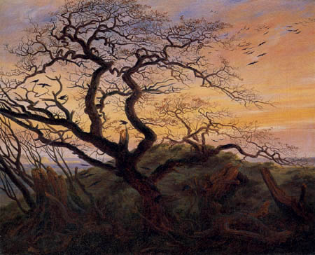 Caspar David Friedrich - Le Arbre avec courbeaus