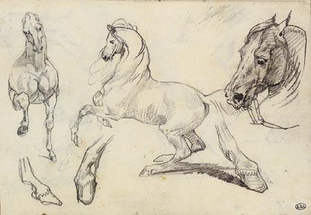 Théodore Géricault - Pferdestudien
