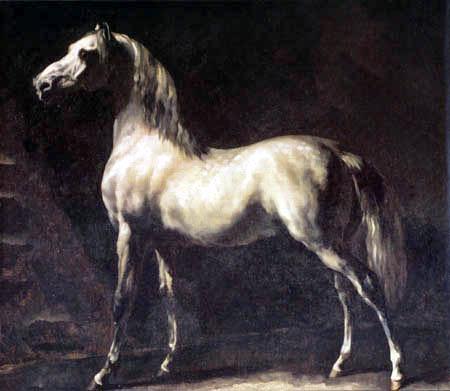 Théodore Géricault - Arabischer Schimmel