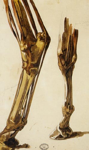 Théodore Géricault - Studie von einem Bein