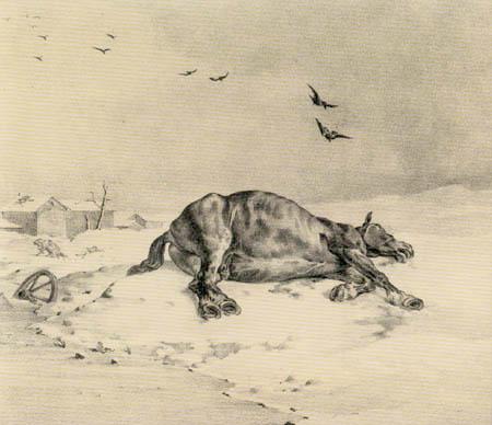 Théodore Géricault - The Dead Horse