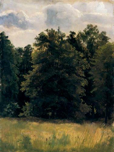 Christian F. Gille - Bäume am Wiesenrand
