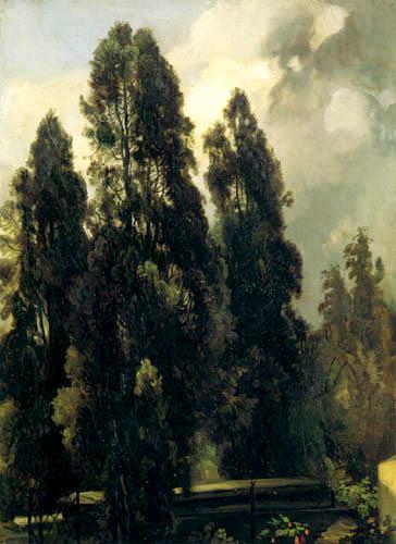 Christian F. Gille - Zypressen