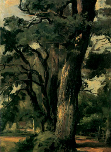 Christian F. Gille - Oak Trees on a sunny way