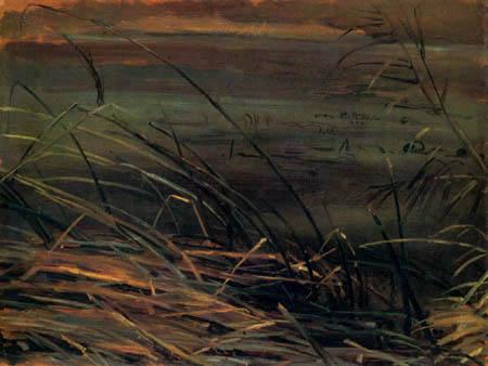 Christian F. Gille - Herbstliches Schilf am Teich