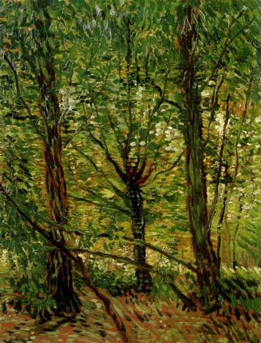 Vincent van Gogh - Bäume und Unterholz