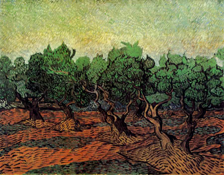 Vincent van Gogh - Olivenhain