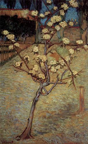 Vincent van Gogh - Blühender Birnbaum