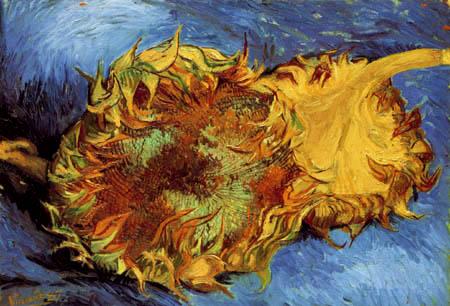 Vincent van Gogh - Zwei geschnittene Sonnenblumen