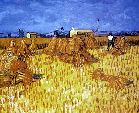 Vincent van Gogh - Ernte in der Provence