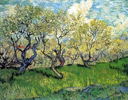Vincent van Gogh - Blühender Obstgarten