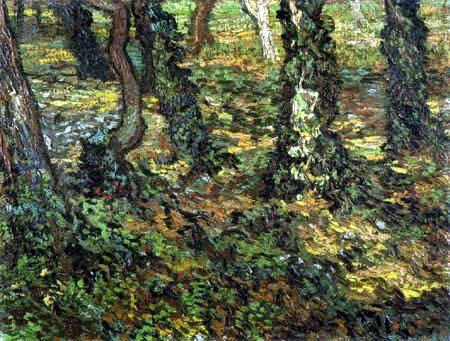 Vincent van Gogh - Unterholz mit Efeu