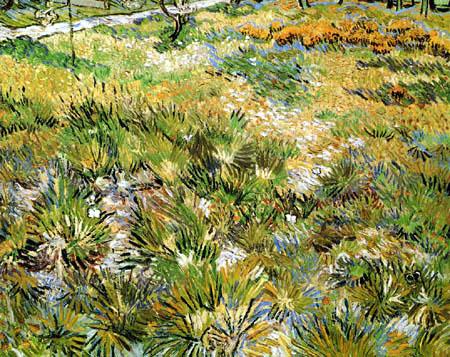 Vincent van Gogh - Wiese im Garten des Hospitals Saint-Paul