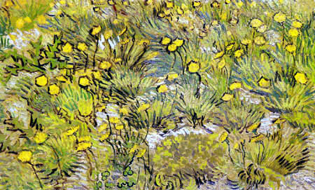 Vincent van Gogh - Meadow with yellow flowers
