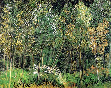 Vincent van Gogh - Wäldchen