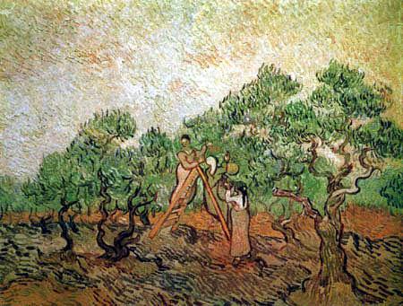 Vincent van Gogh - Olivenpflücker