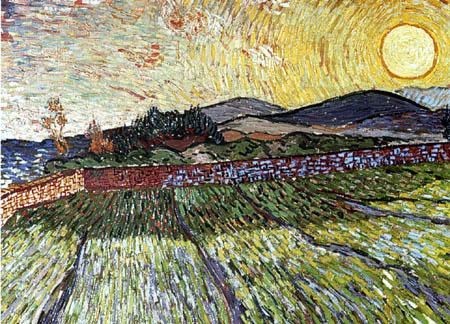 Vincent van Gogh - Umfriedetes Feld mit jungem Korn, Sonnenaufgang
